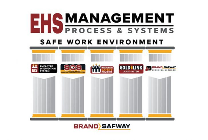 EHS Management Process - 5 Pillars